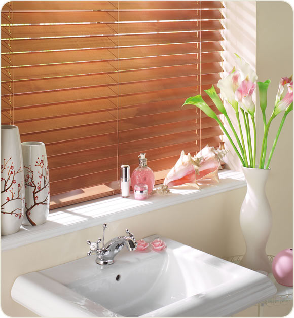Electric blinds controliss blinds news for Blinds bathroom window
